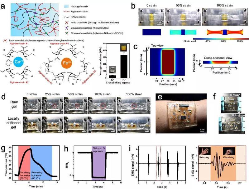 电化学测量方法贾铮_中心教师在水凝胶柔性电子领域最新研究成果于Materials Horizons上发表